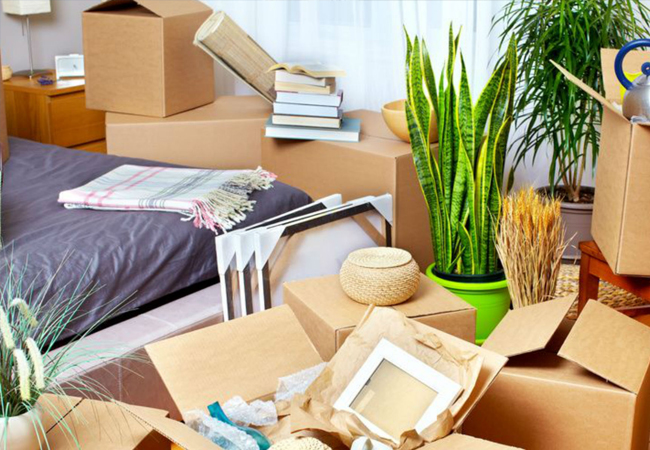 Cheap moving sercices in Katy and Houston